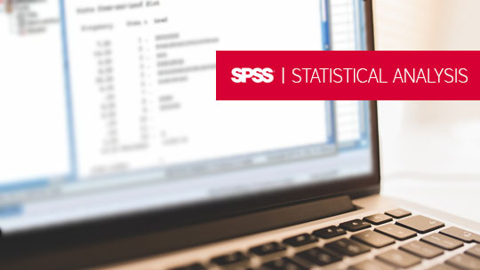 SPSS 22 - Basics Training