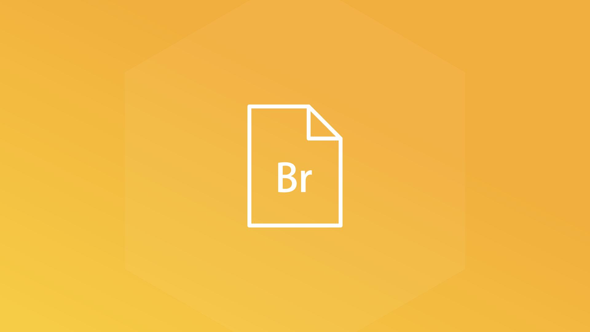 Adobe Bridge Creative Cloud 2014 Training
